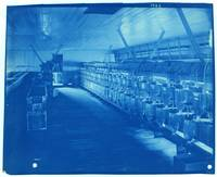Lab, Cyanotype Photograph by Thomas Smillie