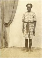 Servant South Africa, 1860. salted paper print.