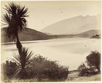 Glendhu - Lake Wanaka. From the album N.Z. Scenery