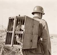 Winged Communication, WWI German