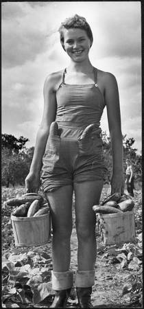 Female farm worker carrying buckets of cucumbers a
