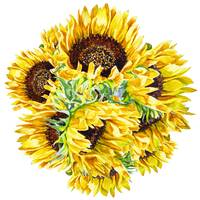 Watercolor Sunflowers Sunshine And A Sunny Day