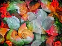 Seashell colorful pattern1