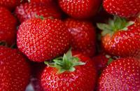 strawberry macro photo food fruit photography