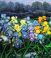 Parading Irises - close up