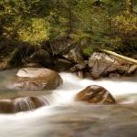"""Snake River"" by BobBerwyn"