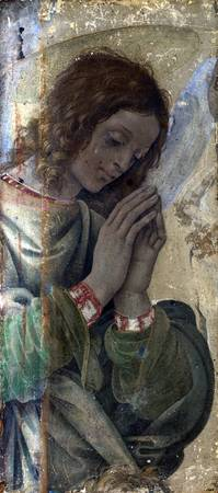 LIPPI, Filippino - An Angel Adoring