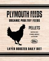 PLYMOUTH FEEDS