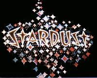 Stardust Hotel and Casino Sign at Night