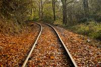 Railroad Tracks on a colorful Fall day