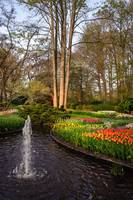 Little Fountain in Keukenhof Garden
