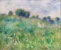 Meadow (1880) by Pierre-Auguste Renoir