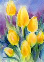 Yellow Tulips Watercolor