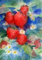 Strawberries Watercolor