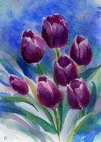 Purple Tulips on Blue Watercolor