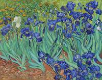 Irises (1889) by Vincent Van Gogh