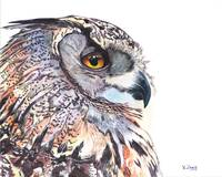 Original gouache painting great horned owl