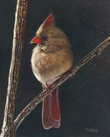 Original oil painting of female cardinal bird
