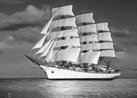 Sailing ship.  Pure dream.