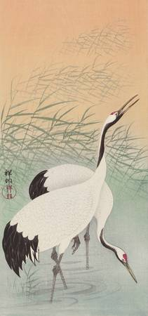 Two Cranes by Ohara Koson