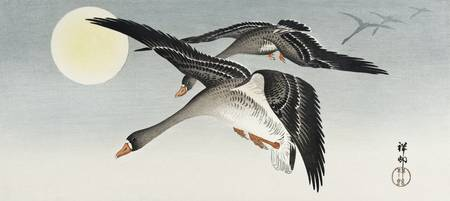 Geese at Full Moon by Ohara Koson