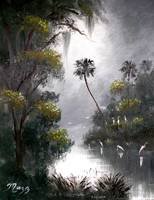 Misty Florida River Egrets
