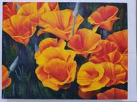 California Poppies f