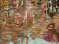 FALL_REFLECTIONS_by susan lipschutz
