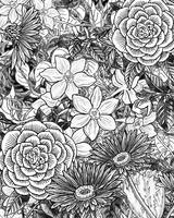 Botanical Flowerbed In Black And White Flowers I