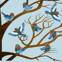 Bird Choir