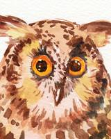 Baby Owl Watercolor Painting Curious Bird