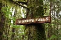 Nymph Falls Sign
