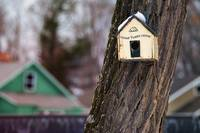 Birdhouse with Home Tweet Home Greeting
