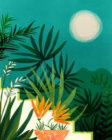 Tropical Moonlight