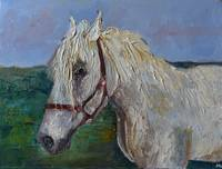 Horse portrait Animal painting