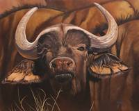 Original oil painting African buffalo