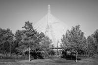 Boston Zakim Bunker Hill Bridge in Black and White