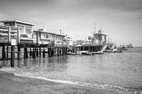 Catalina Island Pleasure Pier in Black and White