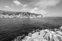 Catalina Island Avalon Harbor in Black and White
