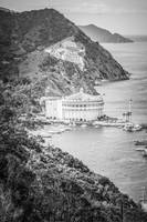 Catalina Casino Aerial in Black and White
