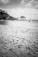 Catalina Island Beach in Black and White