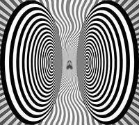 Optical Illusion - Bothersome Fly