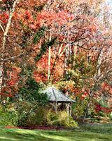 Gazebo in Autumn Garden