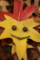 Autumn is smiling at you