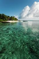 Emerald Water of the Maldivian Coral Reef