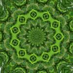 """""""Tree kaleidoscope"""" by JamieB"""
