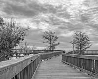 Boardwalk  8  x 10 Item # 2826 8 x 10 (500)