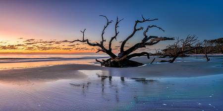 Sunrise at Driftwood Beach Pano