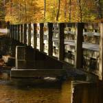 """TN_Smokies_LittleRiverBridgeMetcalfBottoms_110207"" by annmerritt"
