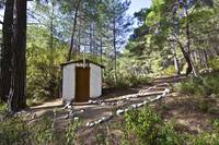 tiny chapel in the forest